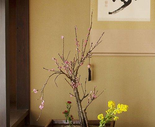 今月の花 3月